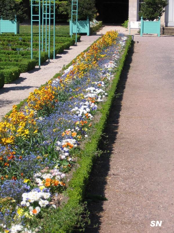 Lac et jardins de dijon page 6 for Jardin japonais dijon