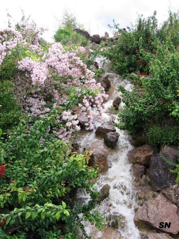 Lac et jardins de dijon page 10 for Jardin japonais dijon