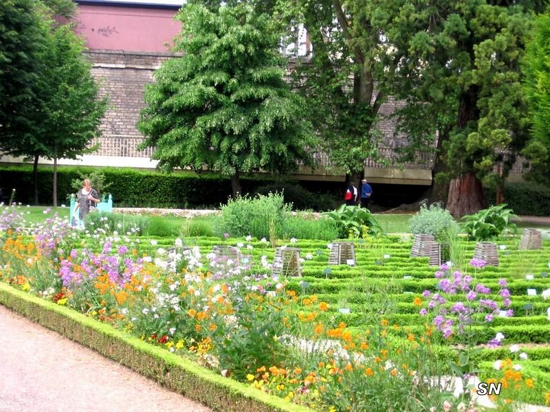 Lac et jardins de dijon page 13 for Jardin japonais dijon